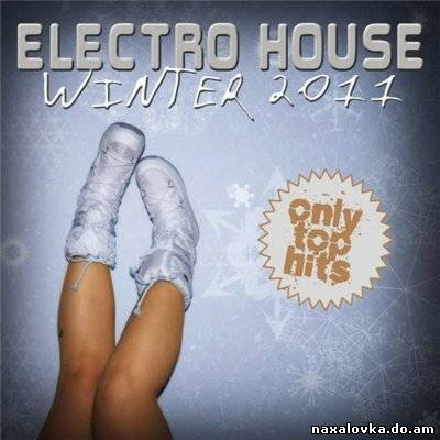 Electro House Winter 2011