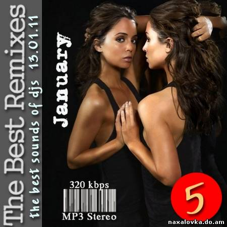 VA - The Best Remixes Vol.5 (2011) MP3